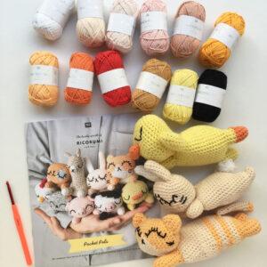 Kit crochet amigurumi