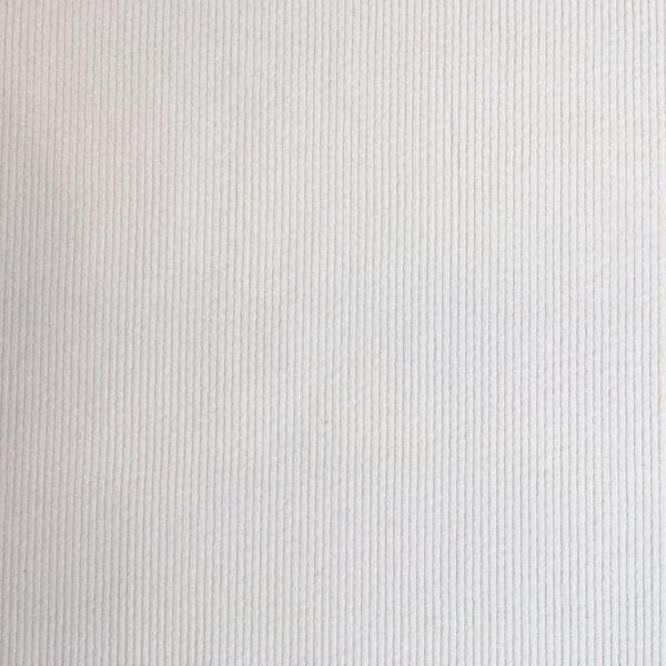Tissu velours à côte blanc